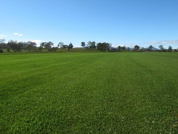 Australian Lawn Concepts Turf Farm